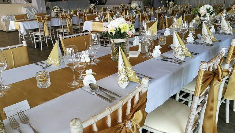 Villa Nečas svadba dj